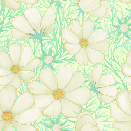 cosmos flower: White watercolor flower pattern cosmos isolated on white background vector