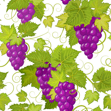 red grape: vector seamless pattern with violet grapes and green leaves.