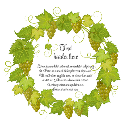 label frame: Hand drawn wreath with grapes isolated on white background. It can be used for weddings, invitations, menus, labels for wine and wine vinegar. Green yellow grapes with bright green leaves. Illustration