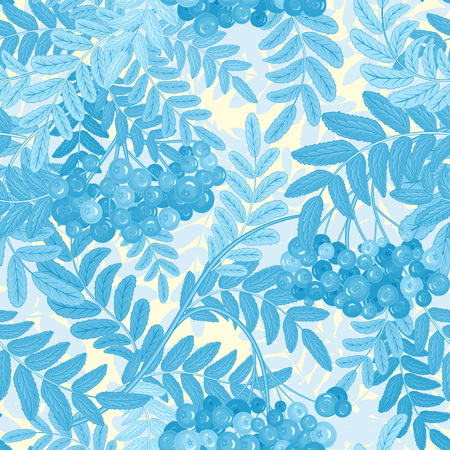 Vector seamless pattern with berries. Blue Rowanberries on a white Background Illustration