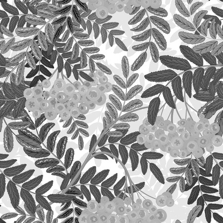 rowanberry: Seamless pattern with hand drawing gray leaves and ash-berry (rowanberry). Vector illustration