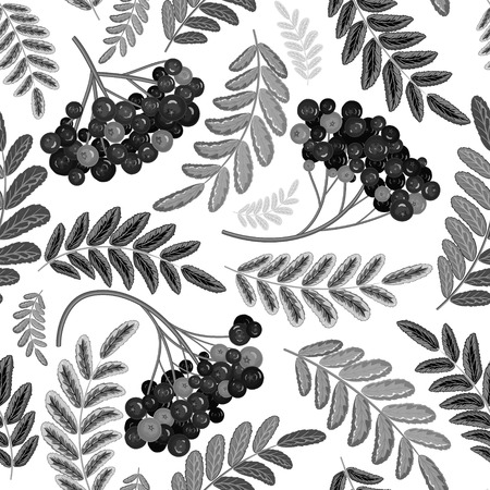 ashberry: Rowan berry seamless texture. Black and white vector illustration