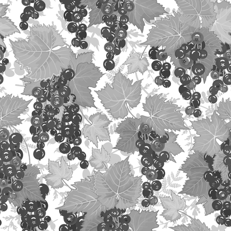 black berry: Vector berry pattern. Background with currant. Black and white