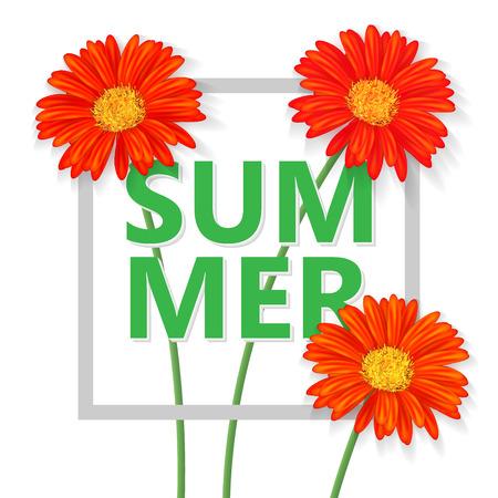 gerbera: Summer wallpaper, vector background, poster with gerbera flowers Illustration