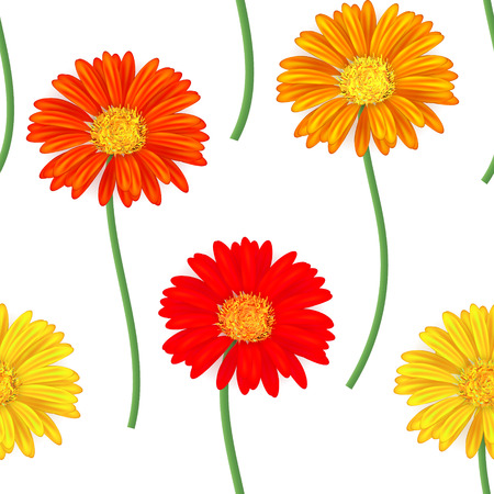 orange gerbera: Seamless pattern with colorful gerbera flowers. Vector illustration. Yellow orange. Illustration