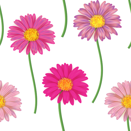 gerbera: Seamless pattern with colorful gerbera flowers. Vector illustration. Pink