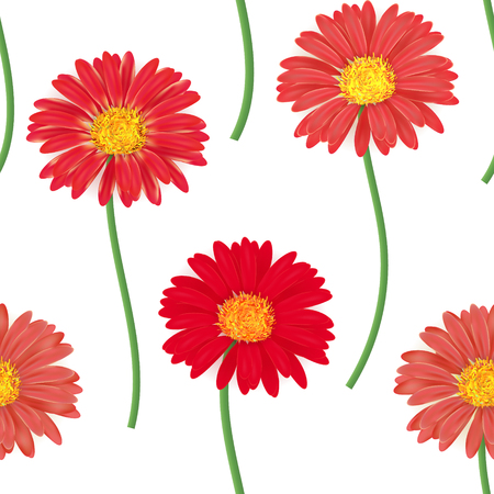 gerbera: Seamless pattern with colorful gerbera flowers. Vector illustration. Red