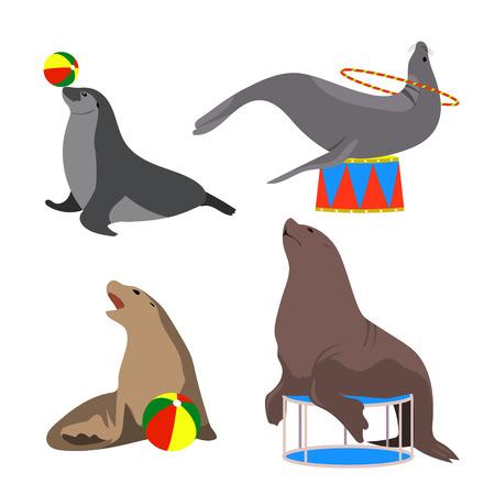 Circus seals. Vector illustration. Set. Cartoon style. Sea lion, fur seal Marine theater