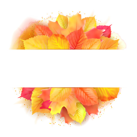 Vector illustration of autumn banner with maple leaf. Template for greeting card Illustration