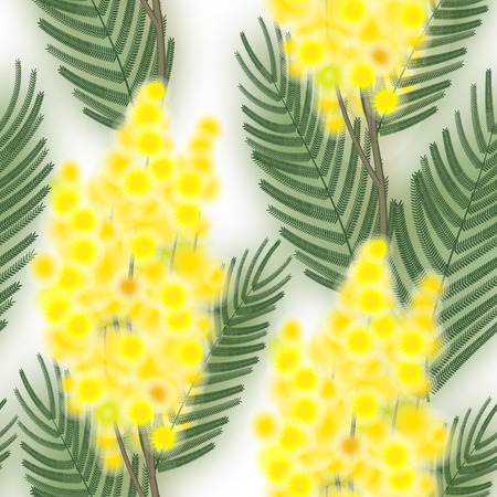 wallpaper International Women s Day: Seamless Spring Pattern with Sprig of Mimosa. Hình minh hoạ