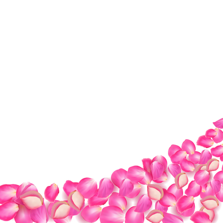 gone: Gone with the Wind rose petals. Realistic vector pink petals on white background.
