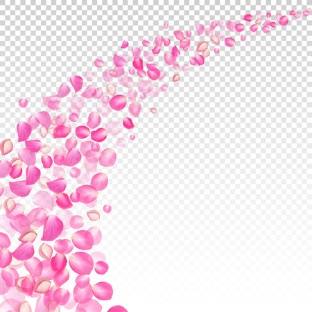 gone: Gone with the wind rose petals.