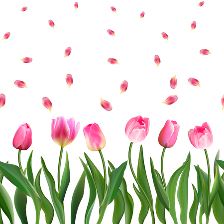 Seamless pattern with realistic pink tulips flowers and petals. Vector illustration. Ornament for fabric, wallpaper, postcards, cards, etc.