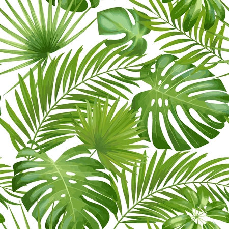 Exotic leaves, rainforest. Seamless realistic tropic leaf pattern. Vector background. Çizim