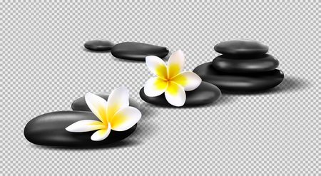 Vector realistic stones on transparent background. Pebbles with Plumeria flowers. Template for Spa salon, cosmetic, massage advertising, Illustration
