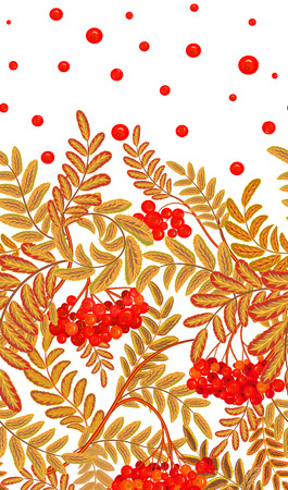 Vertical seamless background with red berries and branches of ripe rowan. Hand drawn illustration