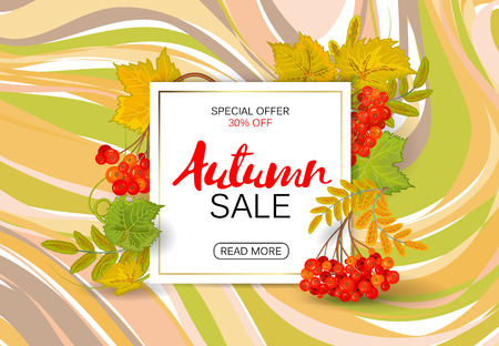 Autumn sale background with colorful autumn leaves and a rowan on marble backdrop. Vector.