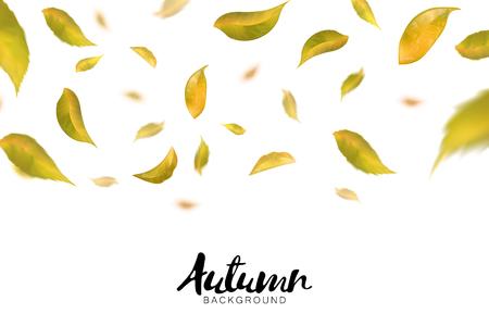 Falling autumn leaves on white background. Vector Illustration