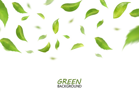 Blurred fresh flying green leaves, quality 3d imitation. Vector