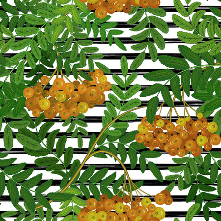 Seamless pattern with rowanberry on strips. Summer background.