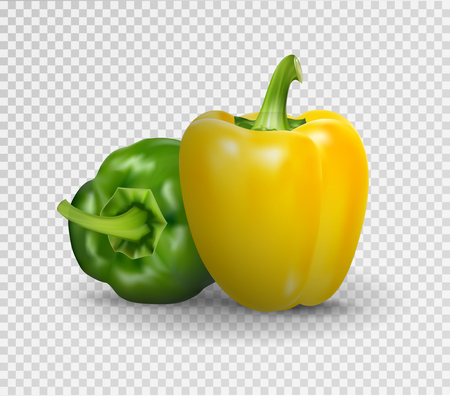 Vector realistic illustration of sweet pepper. 3d Vegetables red and green on a transparent background