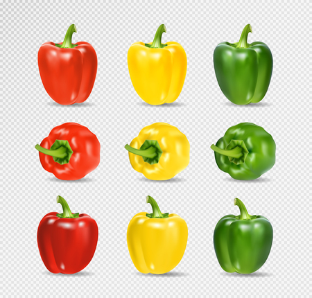 Vector Set of Colored Yellow Green and Red Sweet Bulgarian Bell Peppers, Paprika Isolated on Transparent Background