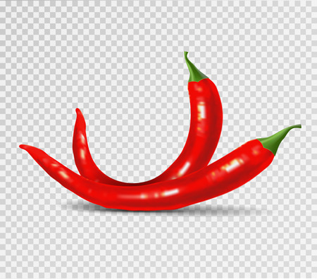Red hot natural chili pepper pod realistic image with shadow vector illustration