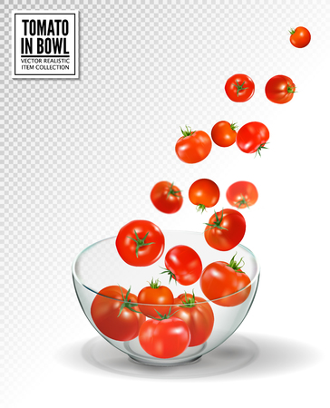 Tomatoes falling into glass bowl. Realistic vector on transparent background.