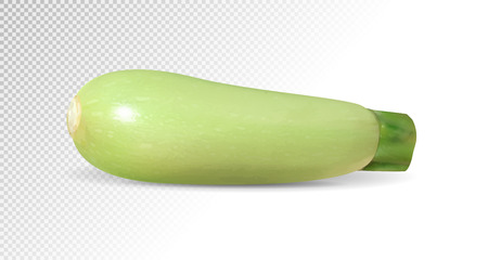 One green marrow. Realistic vector on transparent background, 3d illustration Ilustracja
