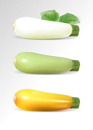 Green, whhite and yellow zucchini set.