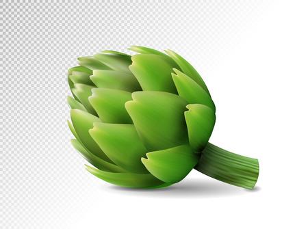 Fresh green Artichokes on transparent background. Realistic vector eps10, 3d illustration