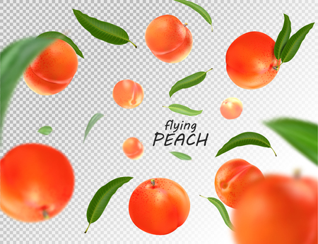 Flying peach. Realistic 3D illustration. Vector peaches on transparent background.
