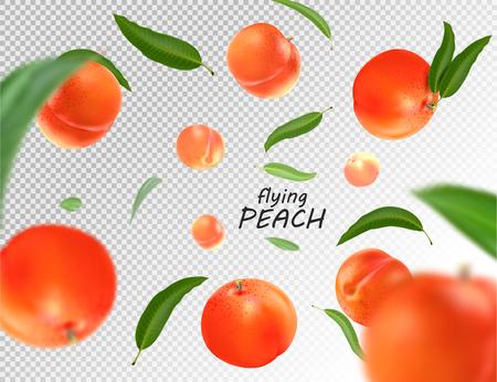 Fliegender Pfirsich. Realistische 3D-Illustration. Vektorpfirsiche auf transparentem Hintergrund.