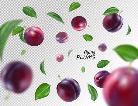 Fliegende lila Pflaumen auf transparentem Hintergrund. Realistischer Qualitätsvektor. eps10. 3D-Darstellung