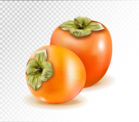 Pair of ripe persimmon fruits isolated on transparent background. Two whole persimmons. Quality realistic vector, 3d illustration Standard-Bild - 126780621