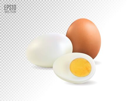 Realistic hard boiled eggs isolated on transparent background vector illustration