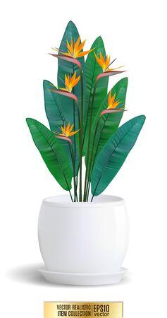 Decorative flower in flower-pot on white background. Vector realistic item, 3d illustration Иллюстрация