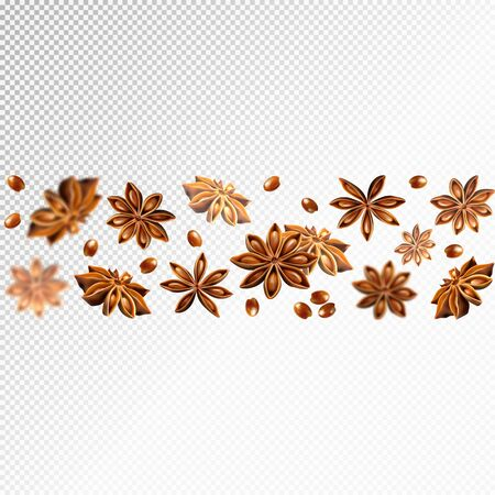 Seamless star anise border. Quality realistic vector, 3d illustration