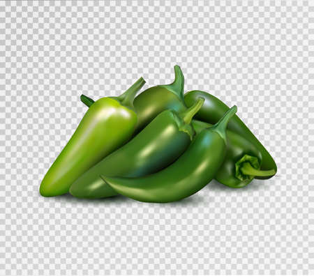 Hot green pepper on transparent background. Jalapeno groupe. Quality realistic vector, 3d illustration.