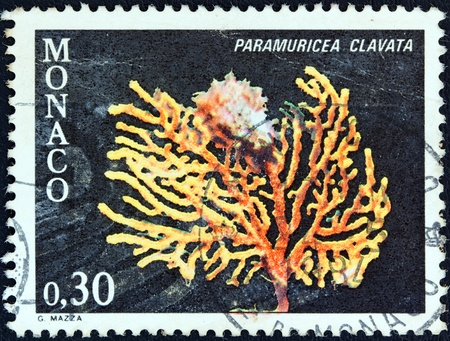 MONACO - CIRCA 1980  A stamp printed in Monaco from the  Marine fauna  issue shows a Great Purple Gorgonian  paramuricea clavata  coral, circa 1980   photo
