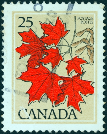 CANADA - CIRCA 1977: A stamp printed in Canada shows Sugar maple leaves, circa 1977.