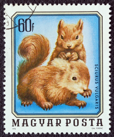 HUNGARY - CIRCA 1976: A stamp printed in Hungary from the 'Young animals' issue shows two young squirrels, circa 1976.