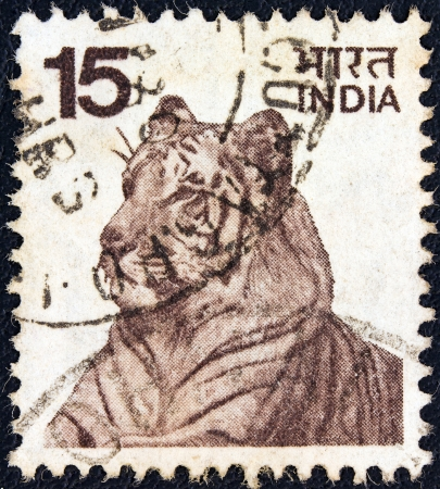 timbre: INDIA - CIRCA 1974: A stamp printed in India shows a Bengal tiger, circa 1974.