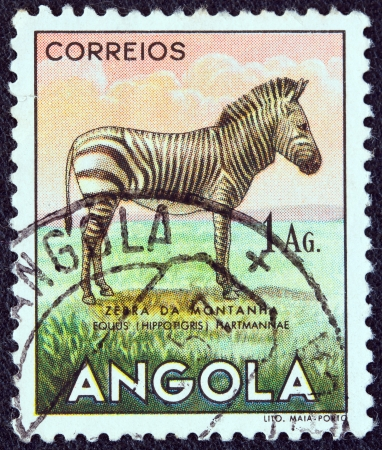 ANGOLA - CIRCA 1953: A stamp printed in Angola from the 'Angolan fauna' issue shows a zebra, circa 1953.