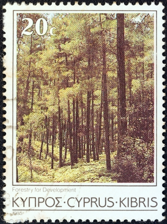 kibris: CYPRUS - CIRCA 1985: A stamp printed in Cyprus from the Cyprus Scenes and Landscapes issue shows forestry for development, circa 1985.