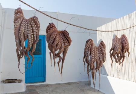 ギリシャの島の太陽の下で乾燥タコ 写真素材