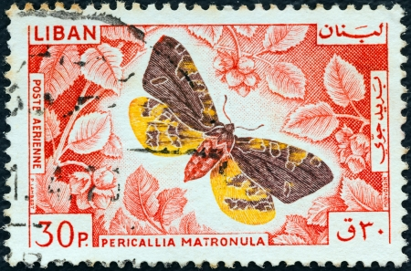 LEBANON - CIRCA 1965: A stamp printed in Lebanon from the ' Butterflies' issue shows a Large Tiger Moth (Pericallia matronula), circa 1965.