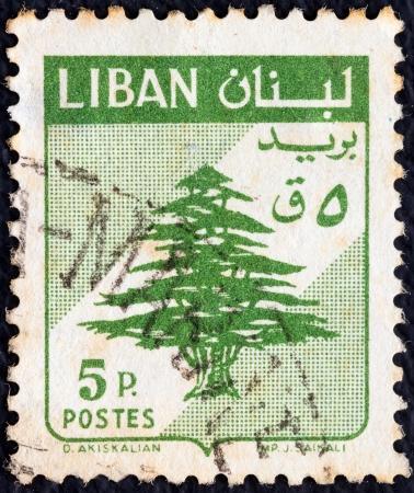 arbol de problemas: LÍBANO - CIRCA 1959: Un sello impreso en Líbano muestra cedro del Líbano, alrededor del año 1959.