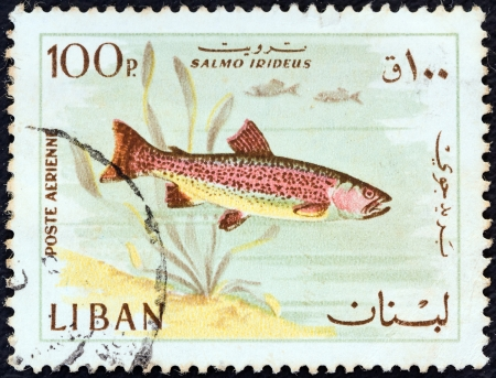 salmonidae: LEBANON - CIRCA 1967: A stamp printed in Lebanon from the Animals and Fishes issue shows a Rainbow trout fish, circa 1967.  Editorial