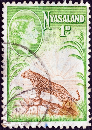 NYASALAND - CIRCA 1953: A stamp printed in Nyasaland shows Leopard and sunrise with Queen Elizabeth II, circa 1953.
